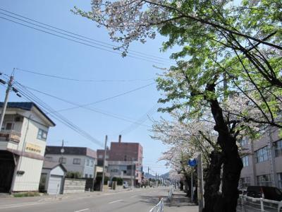 5月6日(金)の天気
