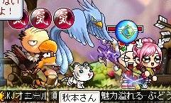 Maple120306_223318.jpg