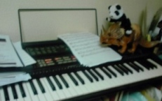 casio-panda.jpg