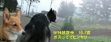 100914r-9.jpg