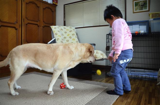 20120208jitaku7.jpg