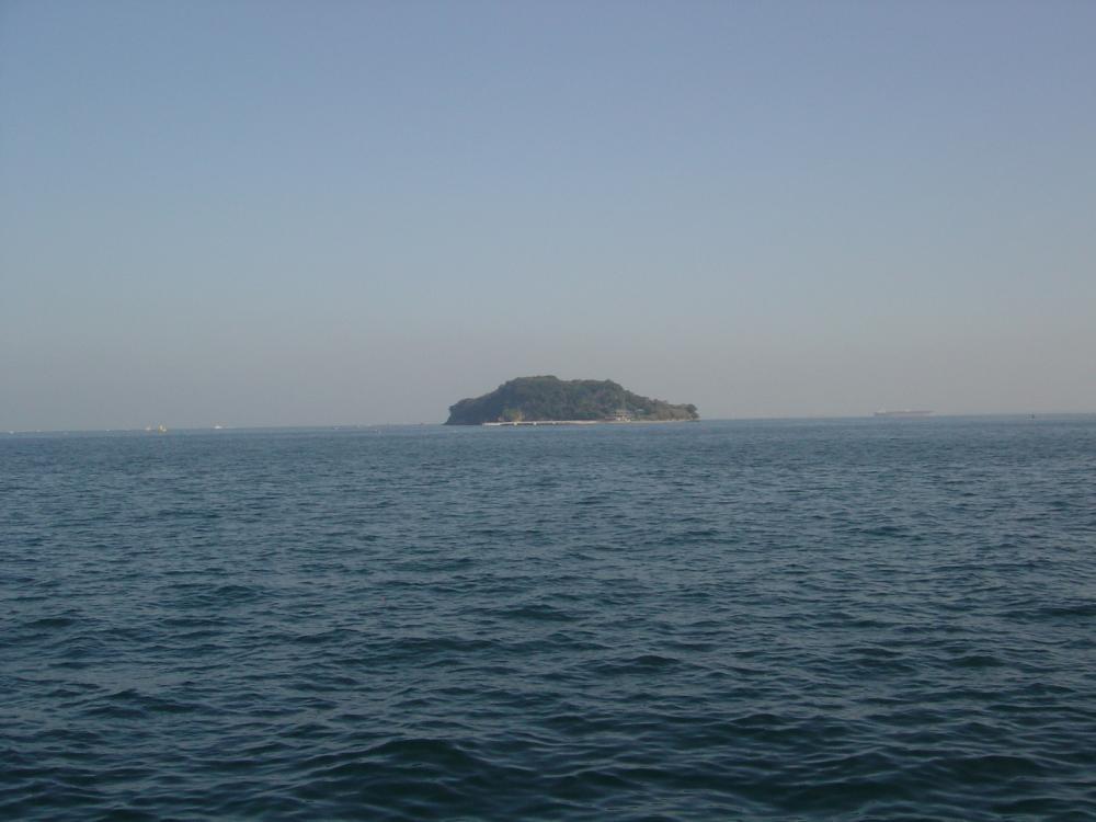 猿島(うみかぜ公園より)
