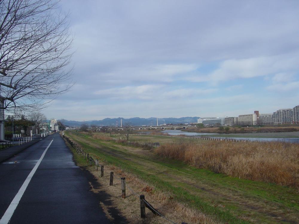 交通公園付近の多摩川