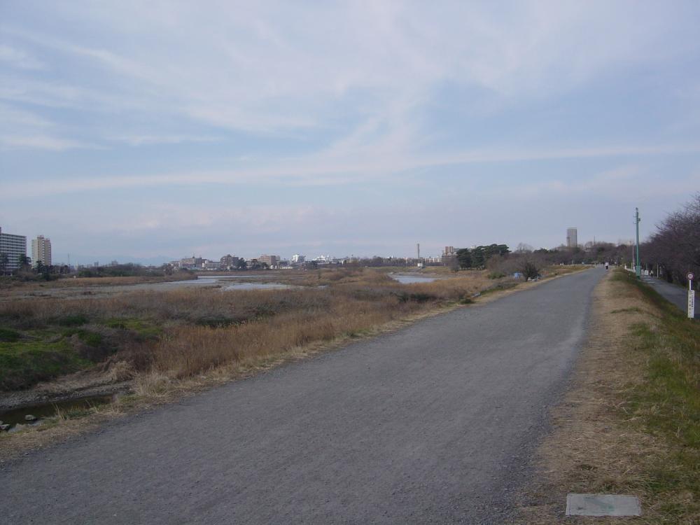 多摩川CR左岸