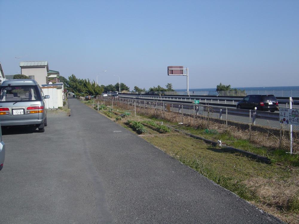 西湘バイパス沿い