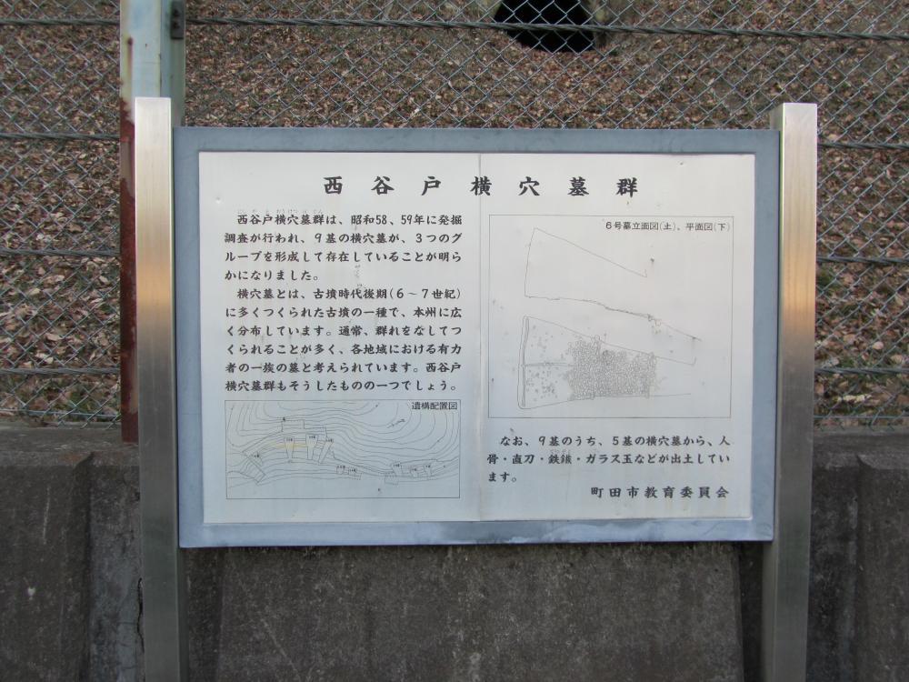 西谷戸横穴墓群①