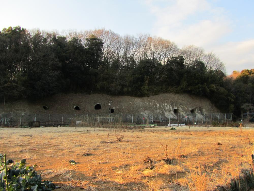 西谷戸横穴墓群②