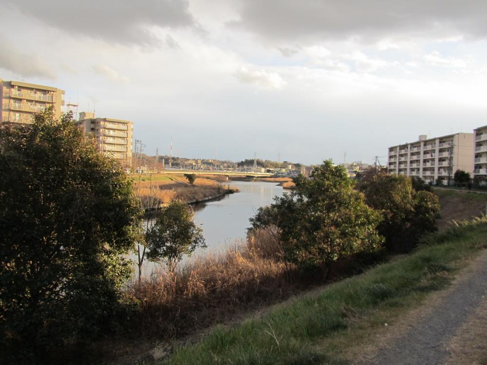 矢上川、鶴見川の合流部