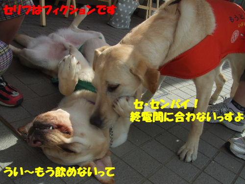c2010_0515_141605