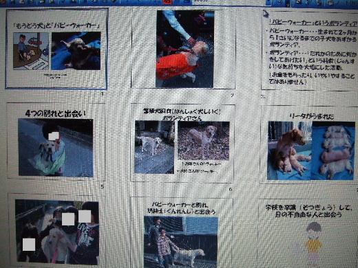 2010_1213_100448.jpg