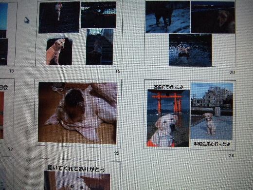 2010_1213_100518.jpg
