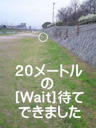 NEC_0034.jpg