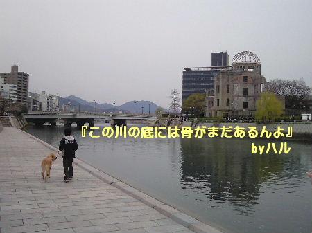 NEC_56.jpg