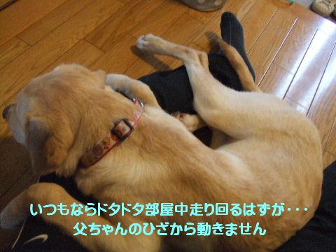 c2010_0413_172317.jpg