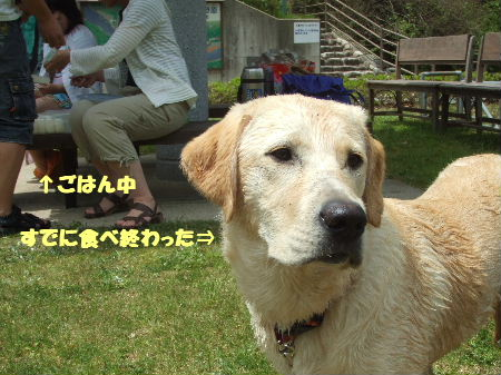 c2010_0509_121539.jpg