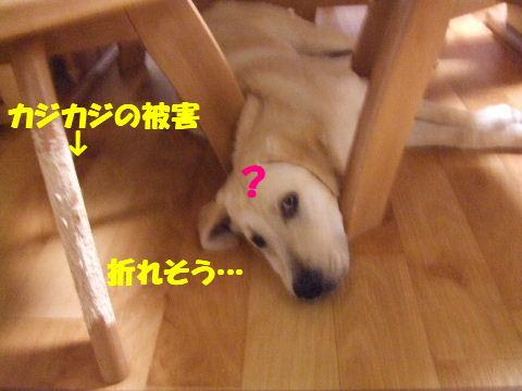 c2010_0701_205048.jpg