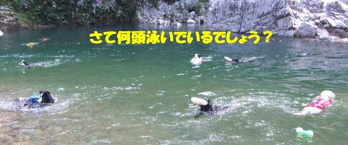 c2010_0719_141414.jpg