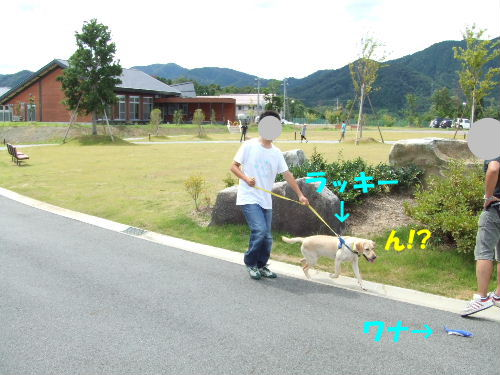 c2010_0828_105904.jpg