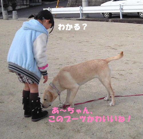 ccNEC_0505.jpg