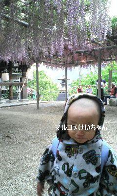 2009-04-27