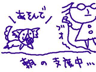 snap_dreamtravelers_20104081252.jpg