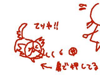 snap_dreamtravelers_2010468446.jpg