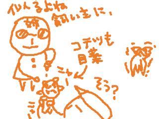 snap_dreamtravelers_20107402811.jpg