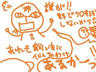 snap_dreamtravelers_20107403934.jpg