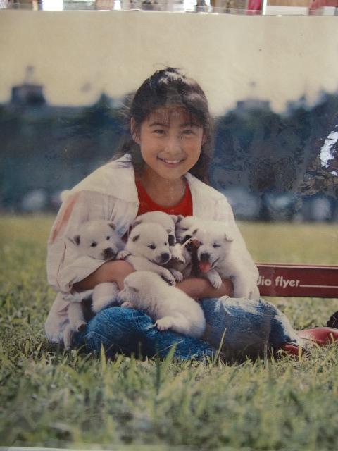 めぐ子供時代☆紀州犬 001