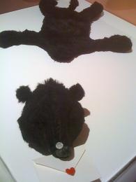 ラブレター熊