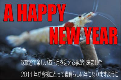 蜷咲ァー譛ェ險ュ螳・1_convert_20110101161652