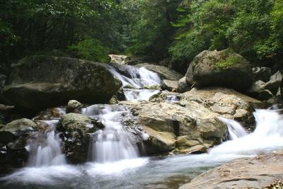 GET 滑床渓谷 森の国ネイチャーツアー