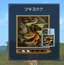 042210 060118ツキヨタケ