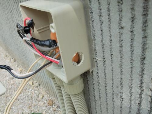 DSCF3546_convert_20101020145035.jpg