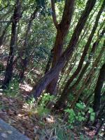 2010_0426_0924_.jpg