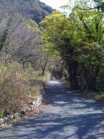 2010_0426_0933.jpg