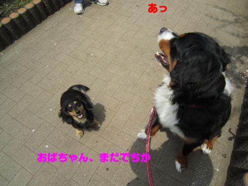 IMG_1258.jpg