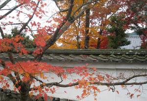 2009.11.29天龍寺blog01