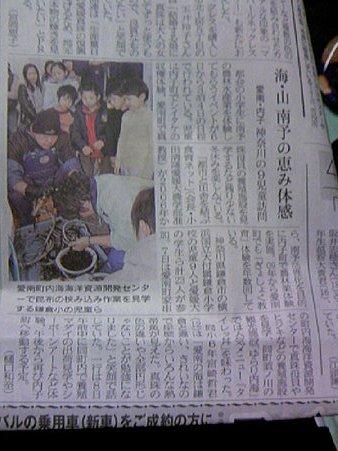13_20110115000913.jpg