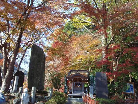 高尾山の紅葉1