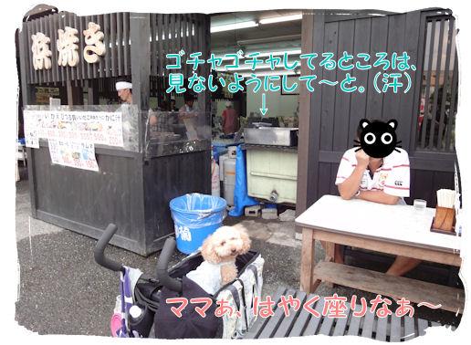 DSC01560.jpg