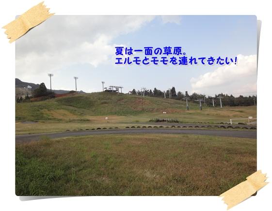 DSC01716.jpg