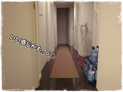DSC01771.jpg