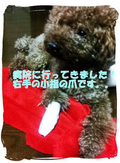 erumo_20110919211346.jpg