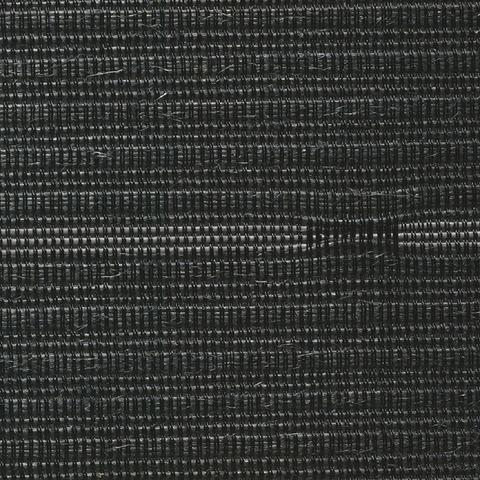 2010-01-03 スマートW3