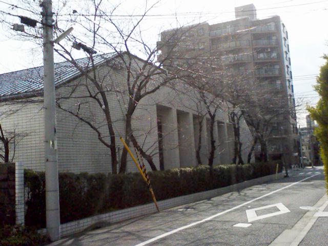 20100311-01.jpg