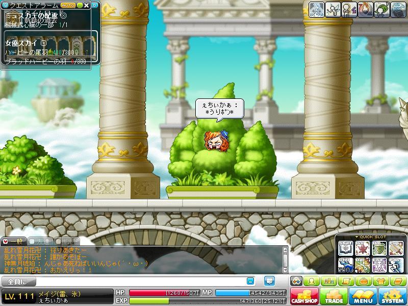 Maple110129_204440.jpg