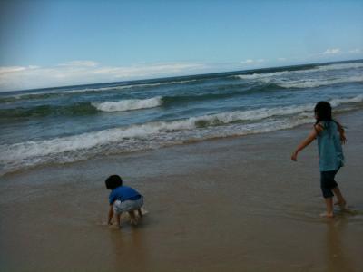 GCの海で遊ぶ!