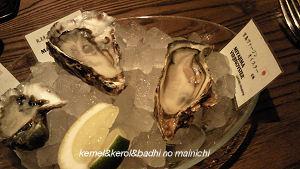 oyster01.jpg