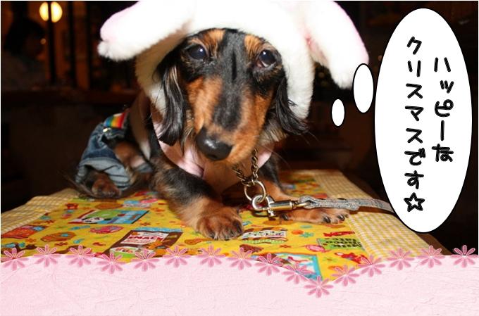 Haappy Christmas!